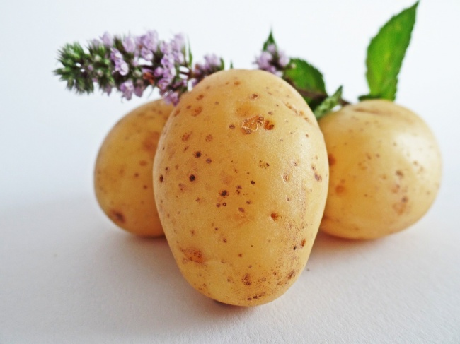 1-cartofi-cearcane